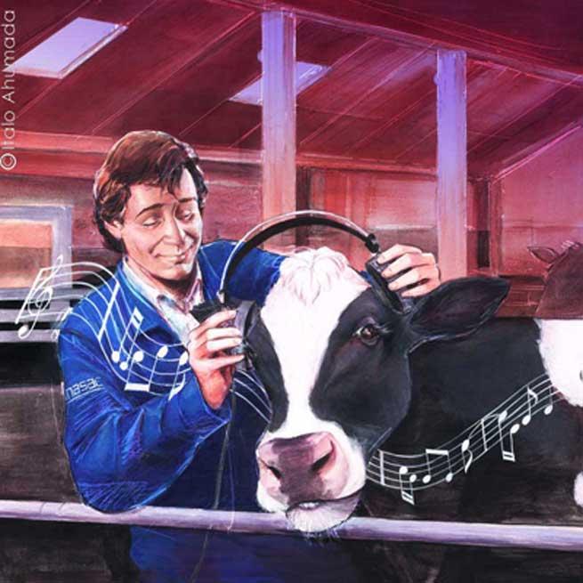 Vaca.ana.ItaloAhumada